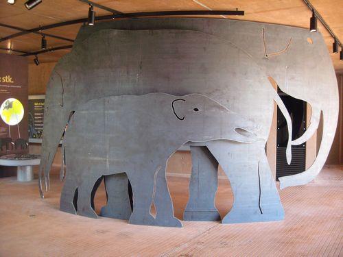 elefant-9a-bmp